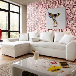 Ciekawym sposobem na podkreślenie charakteru ściany może być zawieszenie obrazu o oryginalnej lub zabawnej treści. Fot. De Life.