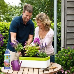 Wiosna w ogrodzie: porady, inspiracje