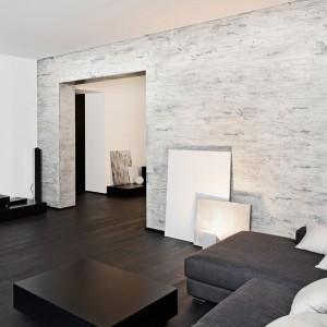 Efekt srebrna brzoza marki Primacol Decorative nada unikatowy, naturalny wygląd każdemu wnętrzu. Dekoracja nie tylko zdobi ścianę, ale też ukrywa jej nierówności. Fot. Unicell Poland.