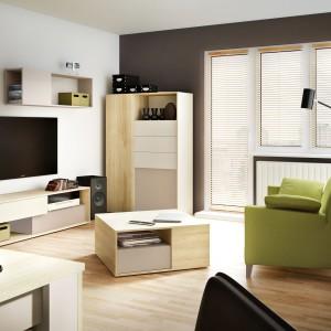 Dzięki kolekcji 3D urządzisz kilka pomieszczeń w tym samym stylu. Charakterystyczną cechą kolekcji są trójwymiarowe fronty (osadzone na różnych głębokościach) oraz nietypowe połączenie barw (zieleń, Mocca, delikatny beż).  Fot. Meble Vox.