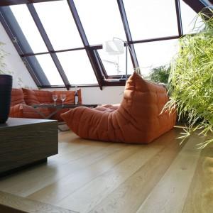 Pomarańczowe wypoczynki zapewniają warunki do relaksu, efektownie kontrastując z roślinami doniczkowymi. Projekt: Alina Grzybowska, Konstanty Jeżewski. Fot. Bartosz jarosz.