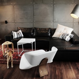 Aranżacja z wykorzystaniem fotela Vector o niezwykle oryginalnej formie i niebagatelnym kształcie. Dzięki wysokiej jakości zastosowanych materiałów użytkownik ma zapewniony maksymalny komfort i wygodę. Fot. archiwum projektanta.
