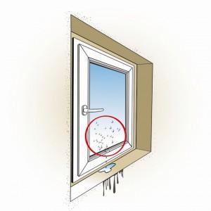 Brak prawidłowego zabezpieczenia połączenia okna z murem powoduje zbieranie się wilgoci.