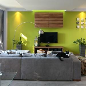 Pokój dzienny, podobnie jak cały apartament, emanuje kobiecością. Najmocniejszym elementem salonu jest ciemnoszara kanapa, którą zestawiono ze ścianą w oliwkowej zieleni. Projekt: Arkadiusz Grzędzicki. Fot. Bartosz Jarosz.