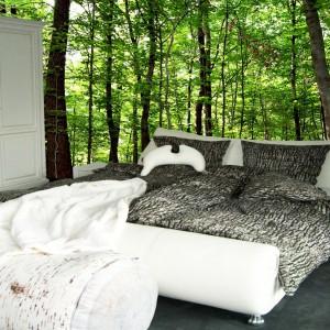Pościel inspirowana charakterystycznym wyglądem kory brzozy wprowadzi do sypialni relaksujący klimat. Spektakularny efekt zapewni również fototapeta z motywem lasu. Fot. MeroWings International.