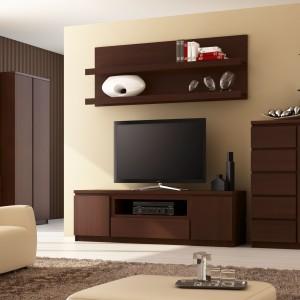 Kolekcja mebli Pello dedykowana jest do salonów oraz domowego biura. Korpusy oraz fronty w wybarwieniu sosna laredo ocieplają wnętrze, tworząc przytulną atmosferę do pracy i relaksu. Fot. Meble Wójcik.