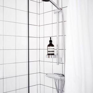 Armatura w strefie prysznica pełni jednocześnie funkcję praktycznej półki na kosmetyki. Fot. Stadshem.