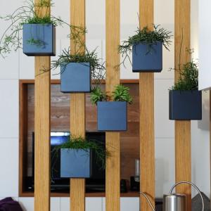 Przepierzenie wykonane z dębowych desek stanowi oryginalny element działowy. Pełni również rolę kwietnika dla niewielkich doniczek, w których rosną zioła i przyprawy. Projekt: GAO Arhitekti. Fot. Mateja Jordovič Potočnik.