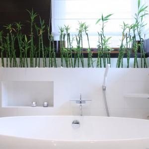W zabudowie nad wanną znajduje się praktyczna półka, na której można umieścić niezbędne akcesoria i kosmetyki do kąpieli. Fot. Bartosz Jarosz.