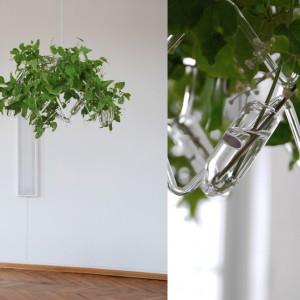 Rzeźba może zawisnąć pod sufitem, zastępując dekoracyjny żyrandol. Jej lekka, szklana forma nie przytłacza wnętrza, a rozrastające się pędy intrygują. Fot. Agnieszka Bar.
