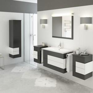 Meble Nex idealnie sprawdzą się w nowoczesnej łazience urządzonej w oparciu o wykorzystanie kontrastu bieli i grafitu. Fot. Defra.
