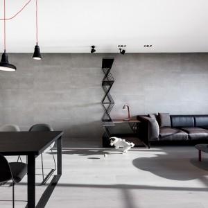 Mieszkanie ma trzech domowników: panią i pana domu oraz sympatycznego czworonoga, który ma swoje własne legowisko, zintegrowane z parawanem, zaznaczającym obecność kącika wypoczynkowego. Projekt: Circle Huang i Gina Chou. Fot. Hey! Cheese.