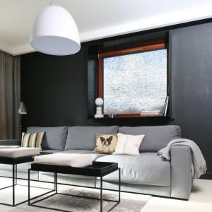 W nowoczesnym wnętrzu szara sofa stanowi główny element wyposażenia. Projekt: Kasia Dudko, Michał Dudko. Fot. Bartosz Jarosz.