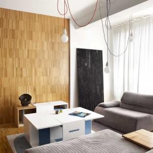 Loftowy klimat wnętrza podkreśla minimalistyczne oświetlenie. Kolorowe kable wpisują się w też w strategię ożywienia wnętrza kolorowymi detalami. Projekt: Studio DontDIY. Zdjęcia: Asen Emilov, Ventsilsava Vasileva.