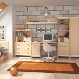Nowoczesne biurko w kolorze jasnego drewna z serii Fan Faro marki Meble Wójcik. Zestawiając je z pozostałymi elementami kolekcji możemy stworzyć ciekawą meblościankę. Fot. Meble Wójcik.
