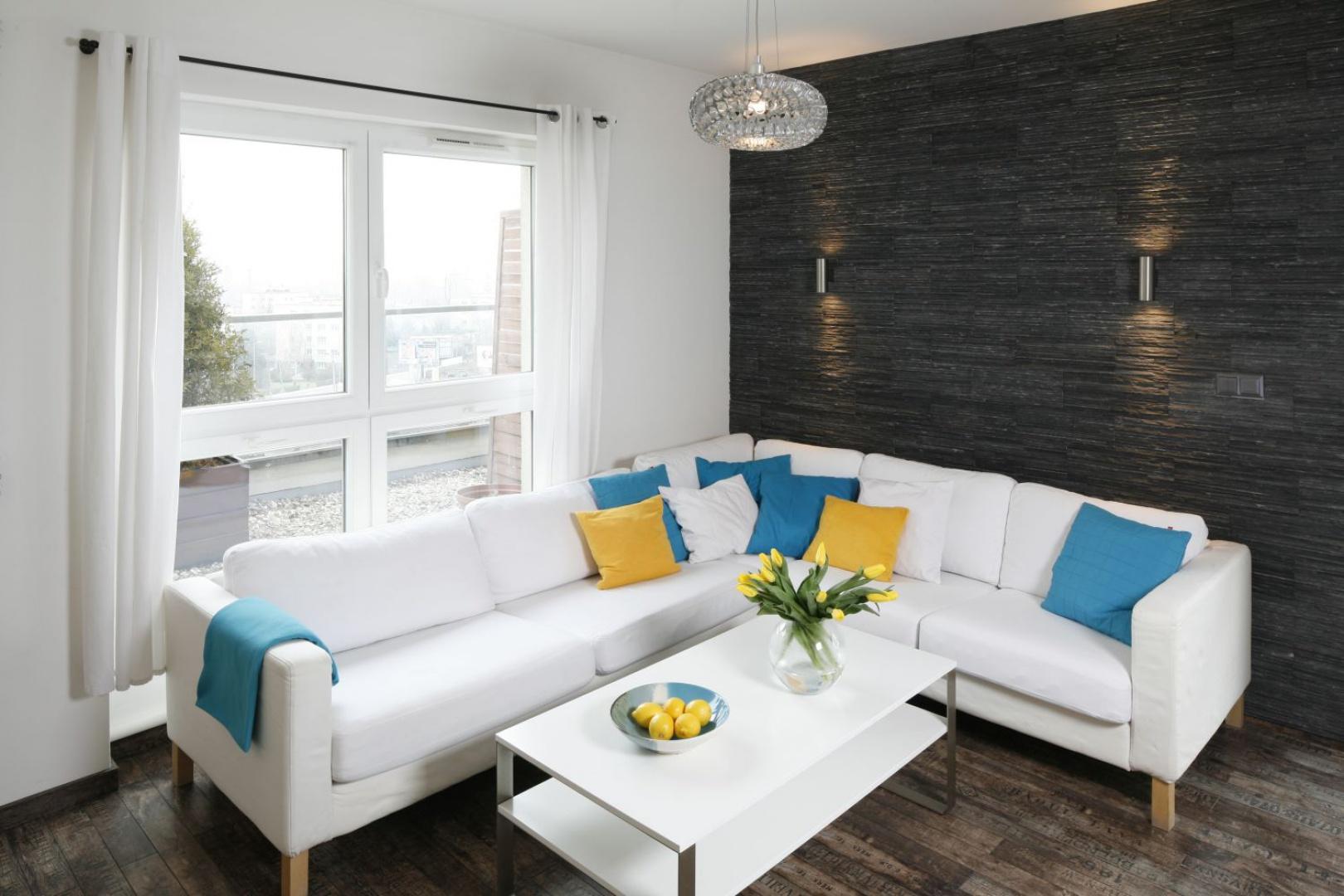 Elegancki salon urządzono w czarno białej kolorystyce. Wyłożona czarnym łupkiem ściana za kanapą to świadome nawiązanie do historii miejsca, w którym obecnie zlokalizowane jest mieszkanie - terenu byłej kopalni. Projekt: Katarzyna Uszok. Fot. Bartosz Jarosz.