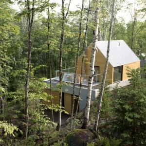 Nowoczesny dom stoi wśród malowniczego lasu. Otaczająca go zieleń stała się jednym z istotnych elementów dekoracyjnych wnętrz, zaglądając do nich przez duże okna. Projekt: Projekt: YH2. Fot. Julien Perron-Gagné.