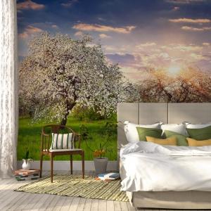 Nowoczesne fototapety potrafią doskonale odwzorowywać naturę. Umieszczone na ścianie niemalże przeniosą nas do pachnącego jabłkami sadu, czy na piaszczystą plażę. Fot. Castorama.