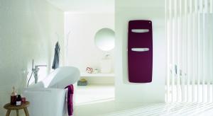 Zehnder Vitalo Spa to prostota i styl, nowoczesność i funkcjonalność - po prostu klasa. Uwagę zwraca smukła i lekka konstrukcja oraz minimalistyczny profil, o niepowtarzalnym wyglądzie.