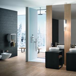 Lekkie, naturalnie zarysowane kształty, jak podpatrzone w pejzażu za oknem – łazienka z wyposażeniem Fluid firmy Ceramica Cielo. Fot. Ceramica Cielo.