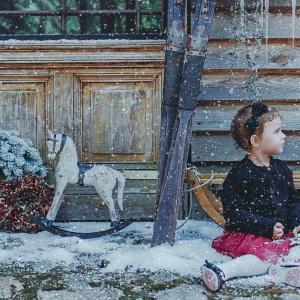 Kolorowy świat zabawek, niczym fabryka Świętego Mikołaja, a w niej pozytywki, szklane kule, bajkowe postaci, zwierzęta i słodkie łakocie. Fot. AD Living Home.