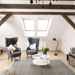 Szarości zastosowane w salonie wprowadzają relaksujący, odprężający klimat do wnętrza mieszkania. Projekt: Piotr Stanisz. Fot. Bartosz Jarosz.