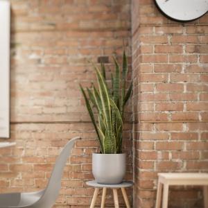 Eamesowskie krzesła, harmonizujący z nimi kwietnik czy minimalistyczna tarcza zegara to nowoczesne akcenty we wnętrzu, które tworzą ciekawy duet ze starymi materiałami wykończeniowymi. Projekt: Bourgeois / Lechasseur Architects. Fot. Adrien Williams.