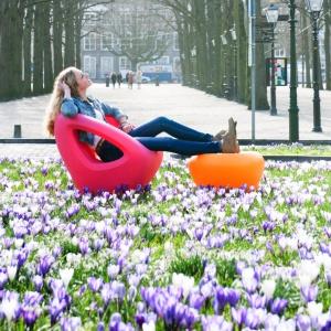Kolorowe siedziska do domu i ogrodu. W sam raz na wiosnę!