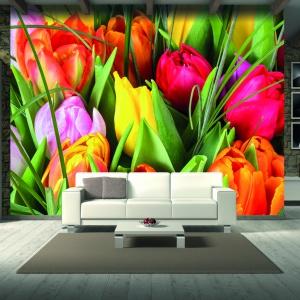 Kwitnące tulipany w skali makro to sposób na wiosenny klimat we własnym salonie przez cały rok. Fot. Grafdeco.