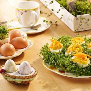 Na stole wielkanocnym jak znalazł jest kolor żółty. Czy to w postaci faszerowanych jaj czy porcelany z uroczymi żółtymi obwódkami. Fot. Villeroy&Boch.