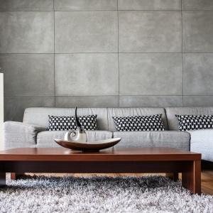Ściana w tym salonie została wykończona płytami z prawdziwego betonu architektonicznego. Delikatnie porowata powierzchnia wynikająca z naturalnego wdzięku betonu nadaje wnętrzu wyjątkowy charakter. Fot. Morgan & Möller, płyty betonowe Silk.