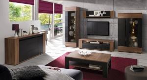 Szafki RTV proponowane aktualnie przez producentów są najczęściej uzupełnieniem kolekcji mebli do salonu. Dzięki temu możemy wyposażyć nasz salon kompleksowo, zachowując przy tym jednolitą stylistykę w całym wnętrzu.