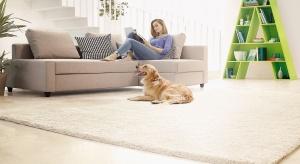 Sprzątanie domów, w których mieszkają psy lub koty stanie się zdecydowanie szybsze i skuteczniejsze z odpowiednimi odkurzaczami.