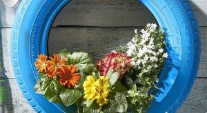 W wielu ogrodach już rozpoczęły się prace pielęgnacyjne i porządkowe. Wczesnekwiaty, które sadzimy na rabatach będą pięknie prezentować się także w pomysłowym kwietniku. Jak go wykonać? Zobaczcie!