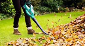 Stan twojego ogrodu po zimie pozostawia wiele do życzenia? To normalne. Powitanie wiosny w pełnej krasie wymaga pewnych przygotowań. Z naszym poradnikiem doprowadzisz swój ogród do świetności w kilka godzin.