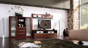 Telewizor w salonie to rzecz ważna. Równie ważna jest szafka, na której stoi. Musi nie tylko pasować do reszty umeblowania, ale także zapewnić nam wygodne oglądanie telewizji.