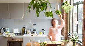 Wiszące doniczki wymyślono dla tych, którzy mają mało miejsca, a przy tym notorycznie zapominają o podlewaniu kwiatów. O tobie mowa? Zobacz, jak może wyglądać zieleń w twoim domu.