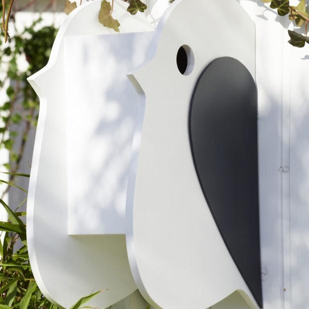 Budka dla ptaków: zobacz jak ją zrobić