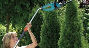 Ogród nowoczesny, francuski, a może japoński? Jest wiele stylów, w jakich możemy urządzić swój wymarzony ogród. Eksperci radzą, jak to zrobić.
