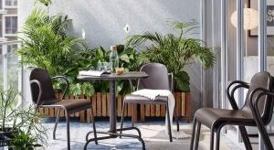 Nawet najmniejszemu balkonowi możemy dodać uroku i powabu dekorując go roślinnością.