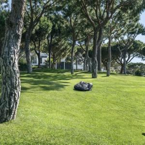 Kosiarki automatyczne - najlepsza pomoc przy koszeniu trawnika