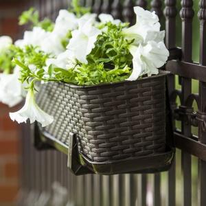 Doniczka balkonowa Rattan marki Verdenia jest lekka i łatwa w utrzymaniu czystości. Motyw rattanu pasuje do ozdobnych roślin i pachnących ziół. Produkt dostępny jest w 2 wymiarach: 40/17/15 cm oraz 60/17/15 i 3 kolorach: karmel, grafit i brąz. Do kompletu można dokupić praktyczną podstawkę i stabilne, bezpieczne uchwyty do zawieszania na poręczy balkonowej. Cena 8,68 zł (doniczka 40 cm). Fot. Galicja dla Twojego domu