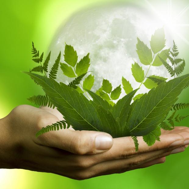 """""""Ekologiczne"""" i """"ekonomiczne"""" często idą w parze"""
