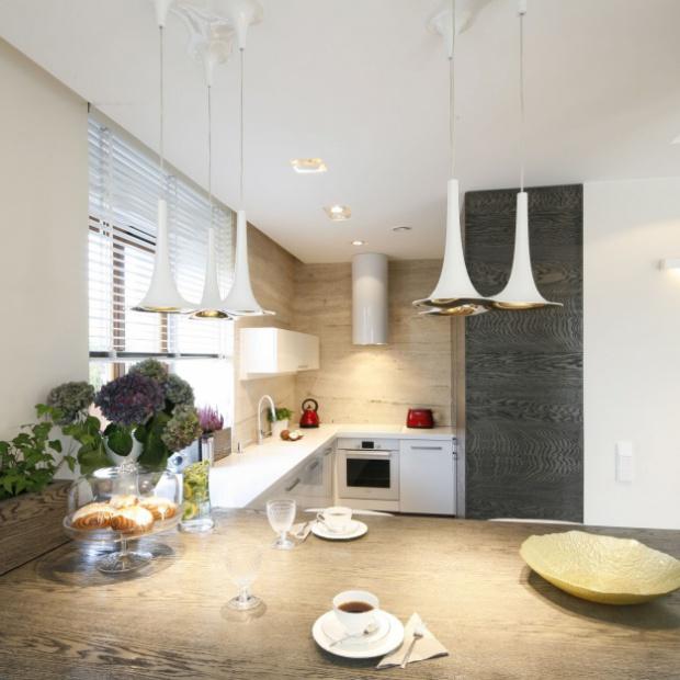Kuchnia otwarta na salon:  zobacz propozycje [dużo zdjęć]