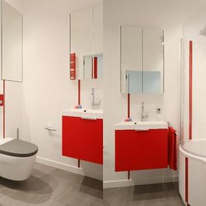 Komfort korzystania z małej łazienki zapewnia wanna z parawanem. Można wziąć tradycyjną kąpiel albo prysznic. Proj. Iza Szewc. Fot. Bartosz Jarosz