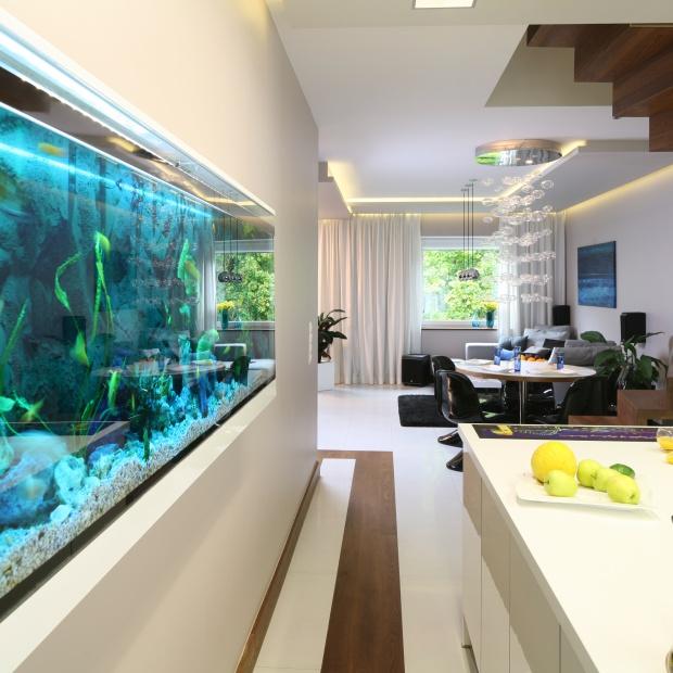 Akwarium we wnętrzu - dawny trend powraca w nowej odsłonie