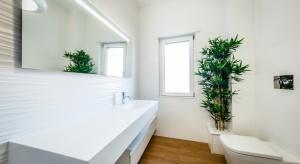Biała łazienka to, wbrew pozorom, wybór z wszech miar praktyczny. Można ją urozmaicać dodatkami w innych kolorach, które możemy zmieniać w zależności od naszego nastroju czy obowiązującej mody.