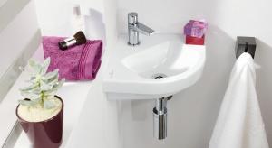 W polskich mieszkaniach rządzą małe łazienki. Ale jak uczynić z kilku metrów kwadratowych przestronne wnętrze? Wystarczy przestrzegać kilku zasad i wybrać odpowiednią ceramikę łazienkową.
