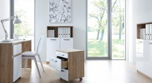 Jak zorganizować wnętrze domowego biura, by znaleźć miejsce na wszystkie dokumenty, książki i segregatory?