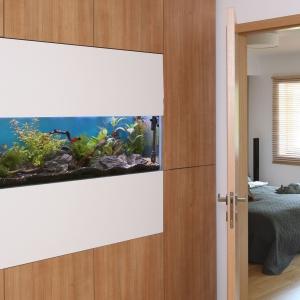 Wodne królestwo w domu - 5 kroków do założenia akwarium